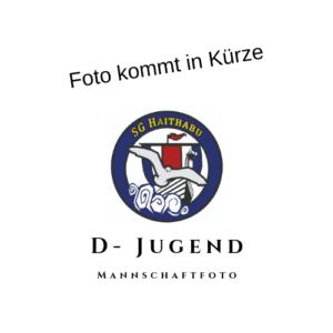 D - Jugend Haithabu