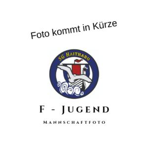 F - Jugend Haithabu